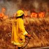 #Provincia: Bomberos continúan trabajando en dos focos de incendio activos