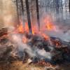 #Incendios: Experiencia en primera persona de una bombera de Santa Rosa