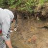 #LosReartes: Hallaron restos fósiles en una zona cerca del río