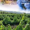 Fiesta del vino y la vid este finde en el Valle