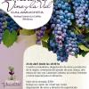 Fiesta del Vino y la Vid de Calamuchita