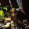 Peñon del Aguila: Parque de aventuras con cerveza artesanal propia