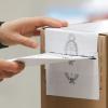#Elecciones2019: ¿Qué se vota este domingo?