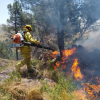 #Calamuchita: Bomberos combaten incendio en Lutti