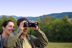 15-razones-por-las-que-la-observación-de-aves-es-el-yoga-de-la-naturaleza-MainPhoto