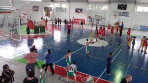 basquet-3