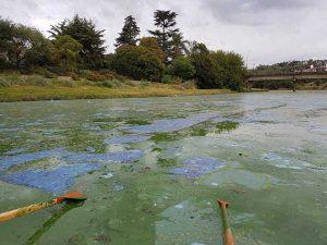 lago san roque 2