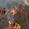 #Provincia: Bomberos combatieron 4 incendios en distintos puntos