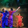 Santa Rosa: Pasó otra edición de Delicias de Pascuas