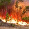 PREVENIR: Epoca de incendios en Cordoba