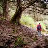 #LugaresDeCalamuchita: Bosque de los Abedules